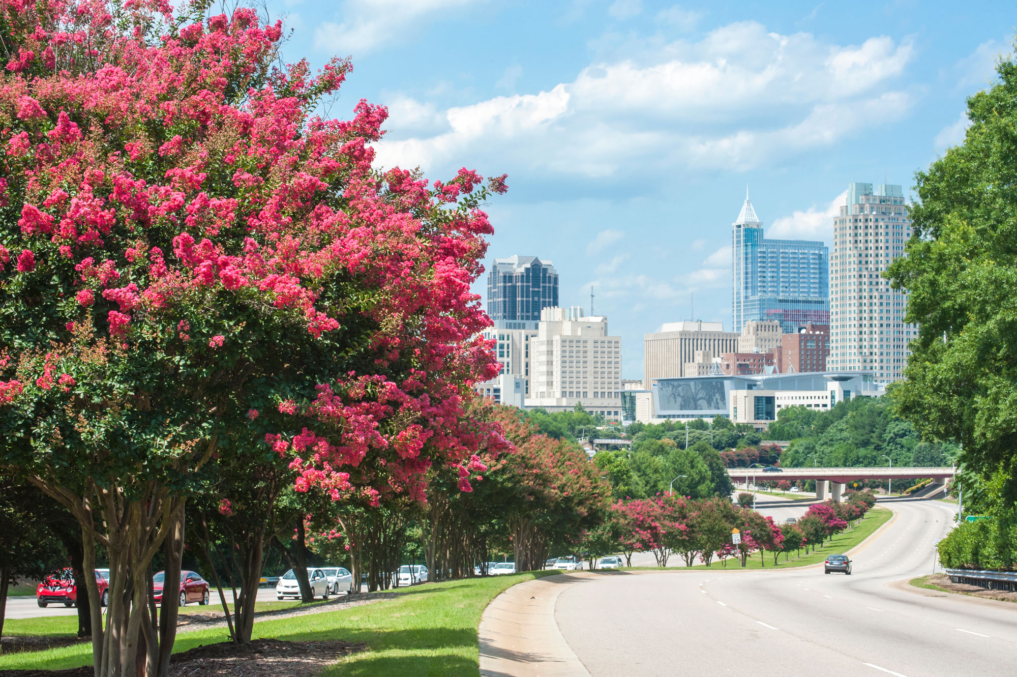 The 5 Best Places to Live in Raleigh